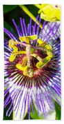 Passion Fruit Flower Beach Towel
