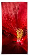 Passionate Ruby Red Silk Beach Towel