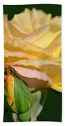 Pastel Rose Ruffles Beach Towel