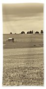 Pastoral Pennsylvania Sepia Beach Towel