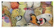 Patchwork Birds Beach Towel