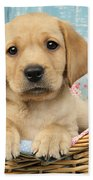 Patchwork Puppy Dp793 Beach Towel