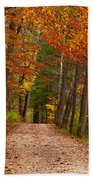 Path In A Fall Woods Beach Towel