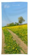 Path In Dandelion Meadow  Beach Towel
