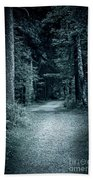 Path In Night Forest Beach Towel