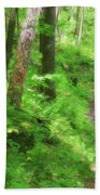 Path In The Forest Beach Towel by Jill Lang