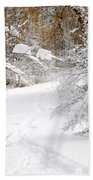 Path In Winter Forest Beach Towel by Elena Elisseeva