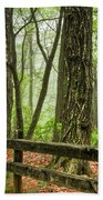 Path Into The Forest Beach Towel by Debra and Dave Vanderlaan