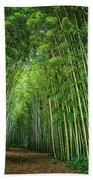 Path Through Bamboo Forest E139 Beach Towel