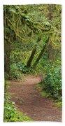 Path Through The Rainforest Beach Towel