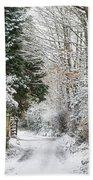 Path Through The Snow Beach Towel