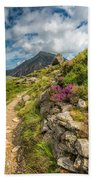 Path To Lake Idwal Beach Towel by Adrian Evans