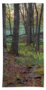 Path To The Daffodils Beach Towel by Bill Wakeley