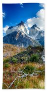 Path To Torres Del Paine Beach Towel