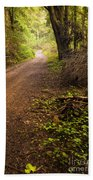 Pathway In The Woods Beach Towel