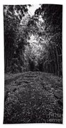 Pathway Through A Bamboo Forest Maui Hawaii Beach Towel