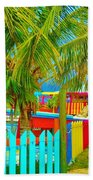 Pathway To Rum Beach Towel