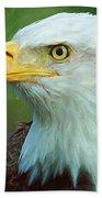 Patriot Beach Towel by Heidi Smith