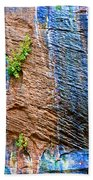 Pattern On Wet Canyon Wall From River Walk In Zion Canyon In Zion National Park-utah  Beach Towel