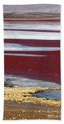 Patterns At Laguna Colorada Beach Sheet