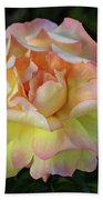 Peace Rose Beach Towel