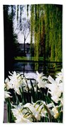 Peaceful Canal Beach Towel