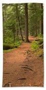 Peaceful Path To Cheakamus Lake Beach Towel