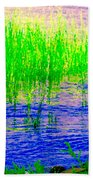 Peaceful Stream  Quebec Landscape Art Tall Grasses At The Lakeshore Waterscene Carole Spandau Beach Towel