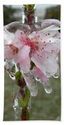 Peach Blossom In Ice Beach Towel