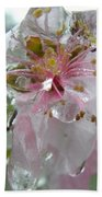 Peach Blossom In Ice Two Beach Towel