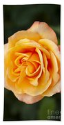 Peach Rose Beach Towel