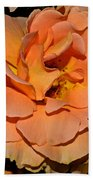 Peach Rose - Digital Paint Beach Towel