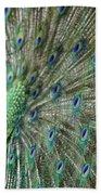 Peacock 21 Beach Towel