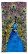 Peacock And Proud Plumage Beach Towel