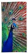 Peacock And Red Barn Beach Sheet