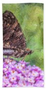 Peacock Butterfly Inachis Io On Buddleja Beach Towel