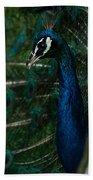Peacock Dance Beach Towel