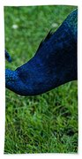 Peacock Portrait 4 Beach Towel