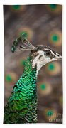 Peahen And Peacock Beach Towel