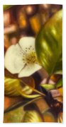 Pear Blossom Beach Towel