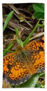 Pearl Crescent Butterfly Beach Towel