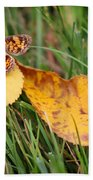 Pearl Crescent Butterfly On Yellow Leaf Beach Towel