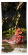 Pedernales Park Texas Bathing Cardinal Beach Towel