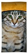 Peekaboo Kitty Beach Towel