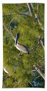 Pelican In The Trees Beach Towel
