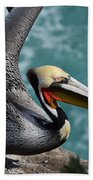 Pelican Lift Off Beach Towel