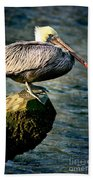 Pelican On A Pole Beach Towel