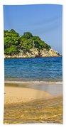 Pelican On Beach Beach Sheet