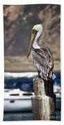 Pelican On Post Beach Towel
