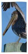 Pelican Stretch Beach Towel